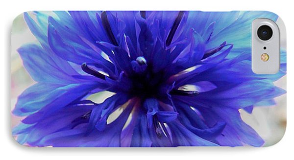 Lapis Lazuli IPhone Case by Barbara St Jean