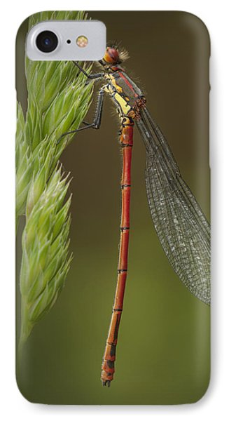 Large Red Damselfly Phone Case by Andy Astbury