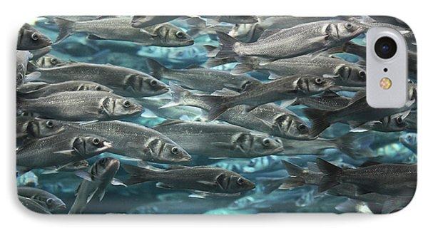 Large School Of Fish IPhone Case