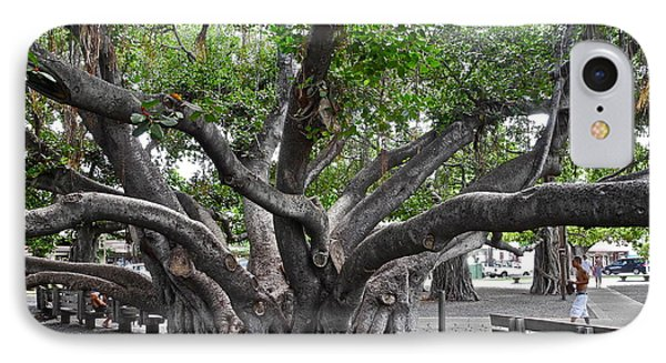 IPhone Case featuring the photograph Largest Banyan Tree In The Usa by Kirsten Giving