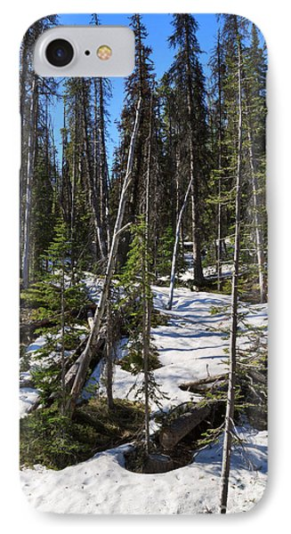 Late Spring In Yellowstone National Park IPhone Case