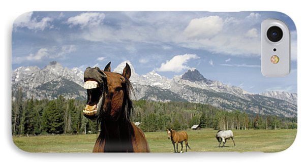 Laughing Horse Phone Case by Porterfld and Chickerng and Photo Researchers