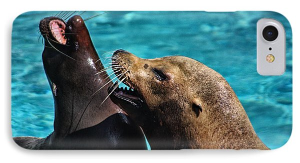 Laughing Seals Phone Case by Karol Livote