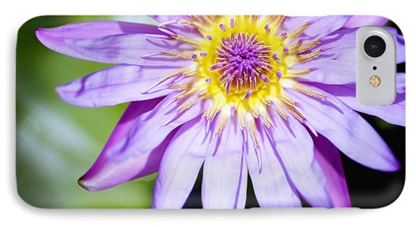 Lavendar Water Lily Phone Case by Kicka Witte