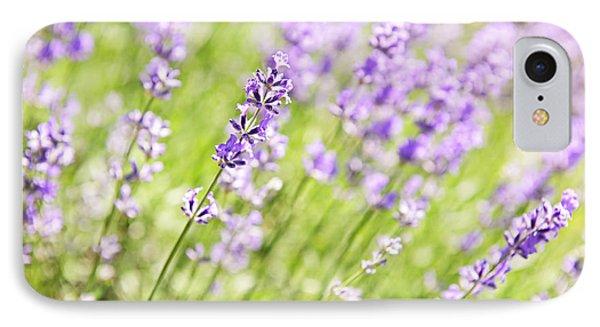 Lavender Blooming In A Garden Phone Case by Elena Elisseeva