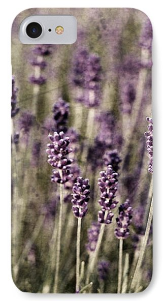 Lavender Field IPhone Case by Laura Melis