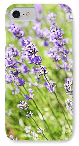 Lavender In Sunshine Phone Case by Elena Elisseeva