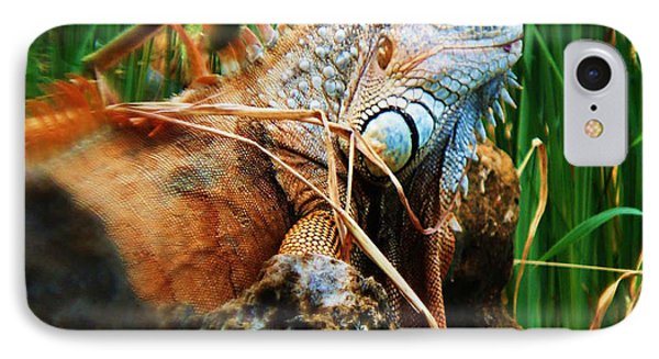 IPhone Case featuring the photograph Lazy Lizard Lounging by Joy Braverman