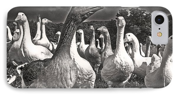 IPhone Case featuring the photograph Leader Of The Pack by William Fields