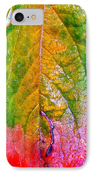 IPhone Case featuring the photograph Leaf 2 by Bill Owen