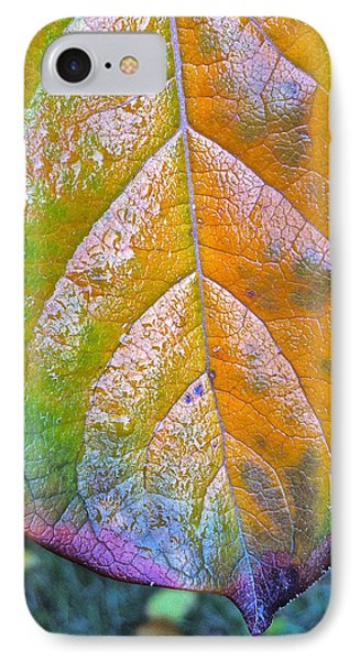 IPhone Case featuring the photograph Leaf by Bill Owen