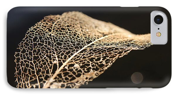 IPhone Case featuring the photograph Leaf Skeleton by Cathie Douglas