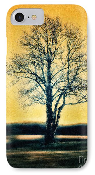 Leafless Tree Phone Case by Jutta Maria Pusl