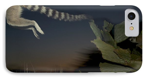 Leaping Ring-tailed Lemur  Phone Case by Cyril Ruoso