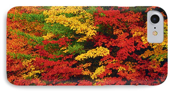 Leaves On Trees Changing Colour Phone Case by Mike Grandmailson