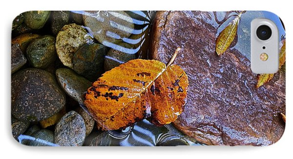 Leaves Rocks Shadows IPhone Case by Bill Owen