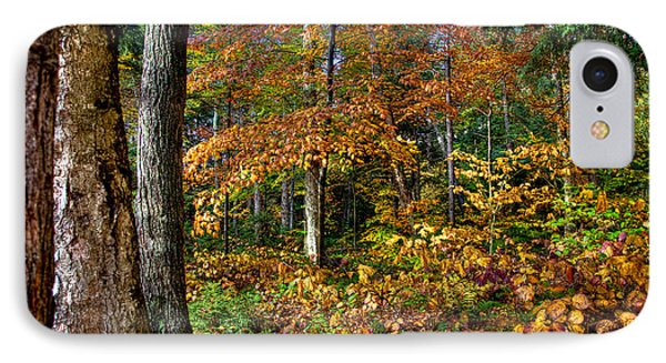 Leaving Cary Lake Phone Case by David Patterson