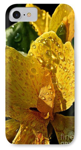 Lemon Drop Canna Lily Phone Case by Susan Herber