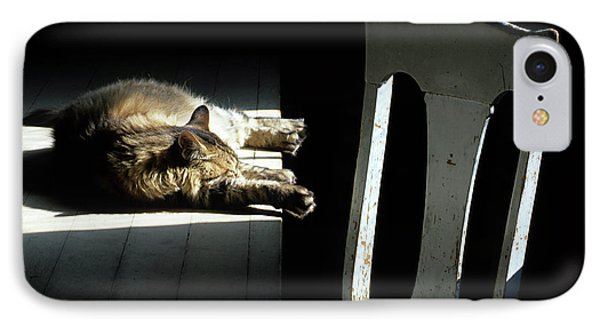 Let Sleeping Cats Lie IPhone Case by Bob Christopher