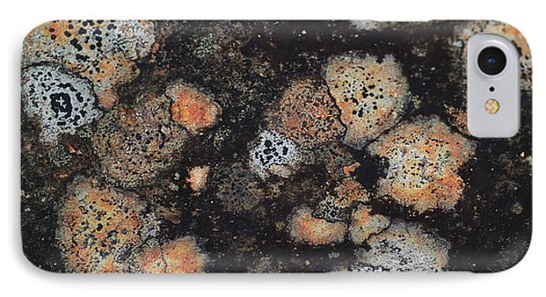 Lichen Abstract Phone Case by Susan Capuano
