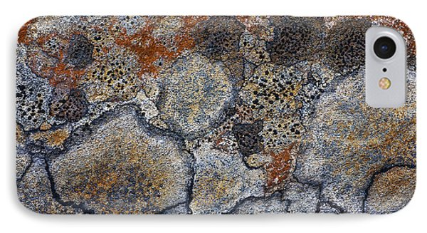 Lichen Pattern Series - 4 IPhone Case by Heiko Koehrer-Wagner