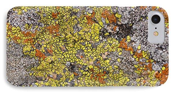 Lichens Phone Case by Heidi Smith