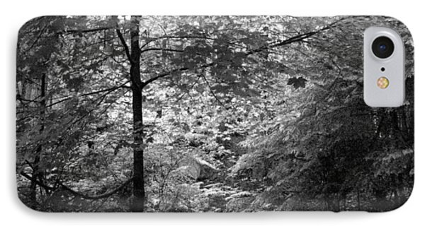 IPhone Case featuring the photograph Light In The Woods by Kathleen Grace