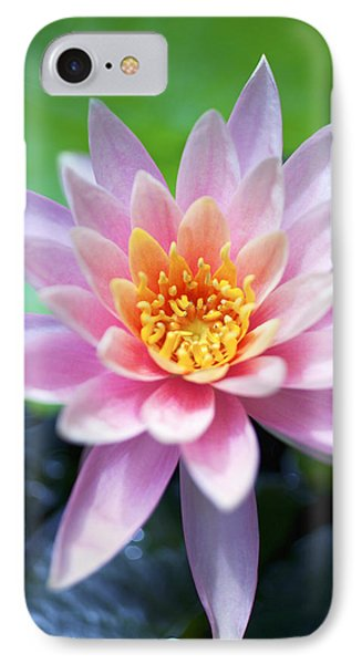 Light Pink Water Lily Phone Case by Kicka Witte