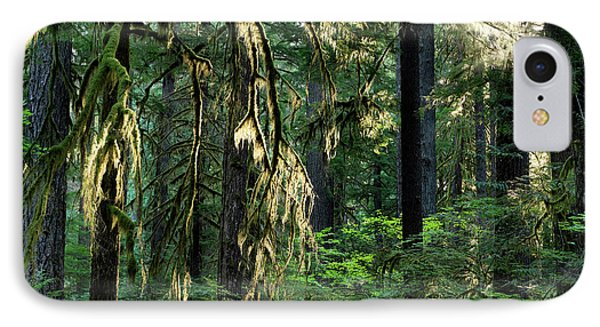 Lighting The Forest IPhone Case by Leland D Howard