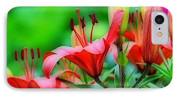 Lilies Ascending Phone Case by Fraida Gutovich