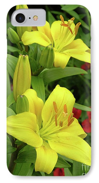 Lilies (lilium 'limelight') Phone Case by Tony Craddock