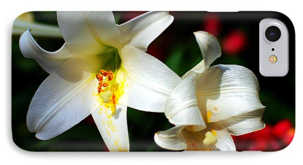 Lilium Longiflorum Flower Phone Case by Paul Ge