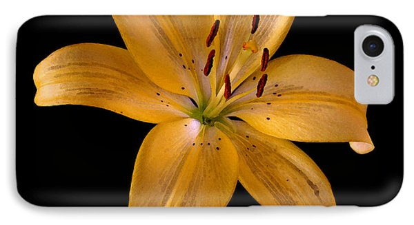 Lily IPhone Case by Karen Harrison