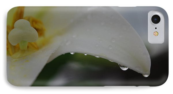 Lily Of Tears IPhone Case by Robyn Stacey