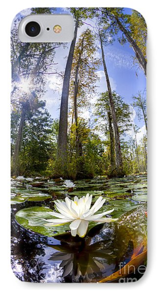Lily Pad Flower In Cypress Swamp Forest Phone Case by Dustin K Ryan