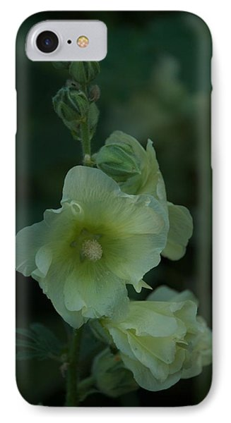 IPhone Case featuring the photograph Lime by Joseph Yarbrough