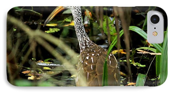 Limpkin Phone Case by Theresa Willingham