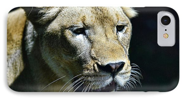 Lion - Endangered Species - Wildlife Phone Case by Paul Ward
