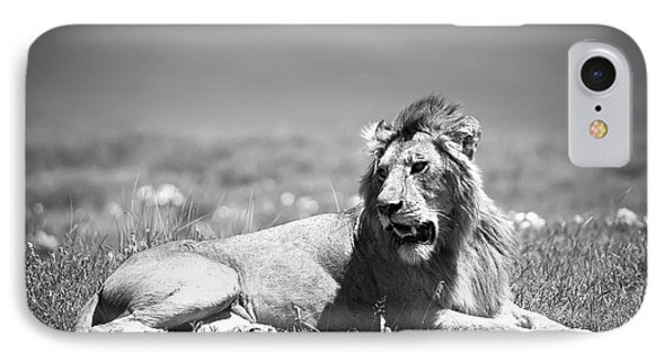 Lion King In Black And White IPhone Case by Sebastian Musial