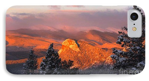 Lion's Head II IPhone Case by Angelique Olin