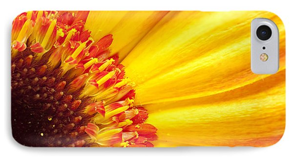 IPhone Case featuring the photograph Little Bit Of Sunshine by Eunice Gibb