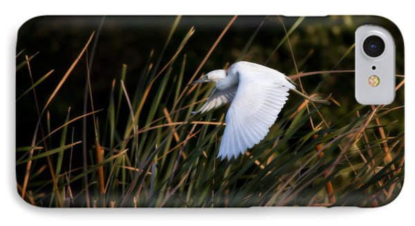 IPhone Case featuring the photograph Little Blue Heron Before The Change To Blue by Steven Sparks