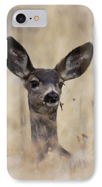 Little Fawn IPhone Case by Steve McKinzie