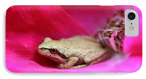 Little Frog In A Red Rose Flower Phone Case by Jennie Marie Schell