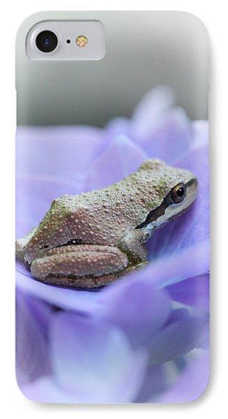 Little Frog On Hydrangea Flower IPhone Case by Jennie Marie Schell