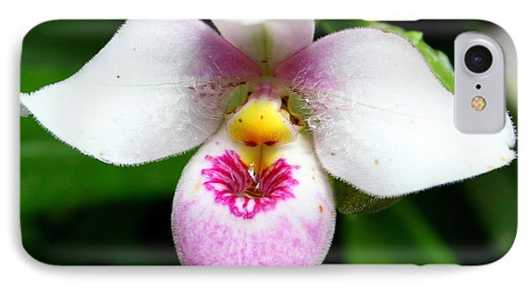 Little White And Pink Orchid IPhone Case