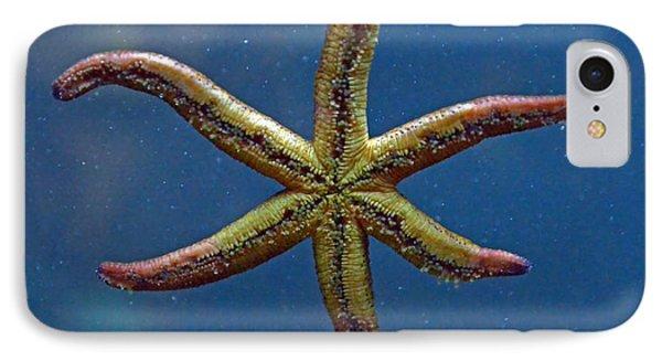 Live Starfish Phone Case by Sandi OReilly