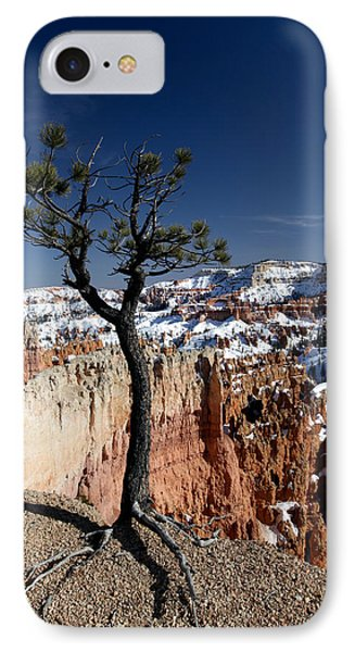 IPhone Case featuring the photograph Living On The Edge by Karen Lee Ensley