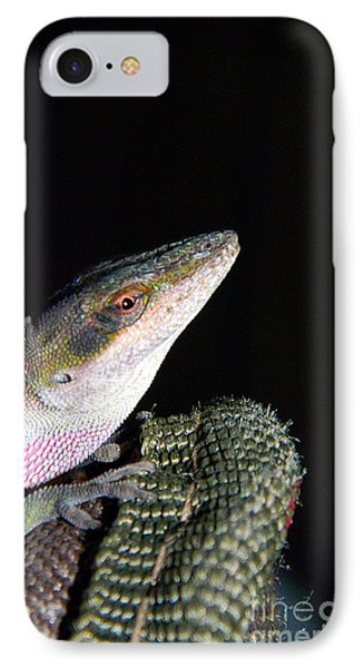 IPhone Case featuring the photograph Lizard by Ester  Rogers