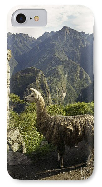 Llama On The Inca Trail Phone Case by Darcy Michaelchuk